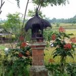Im Norden von Ubud ist es einfach noch klasse