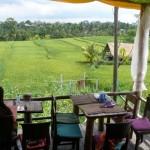 das Organic Cafe mit traumhafter Aussicht